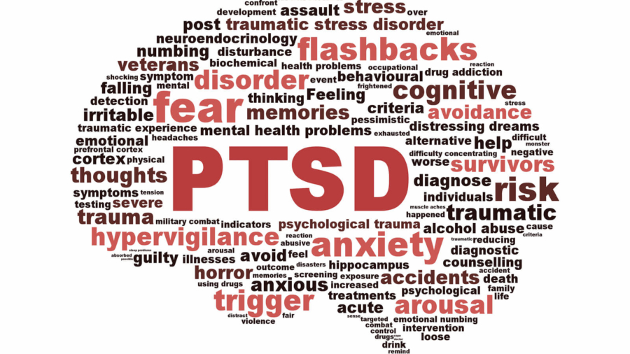 Families, Addiction, and PTSD