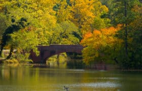 asheville bridge over lake