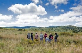 group of men meeting in pasture