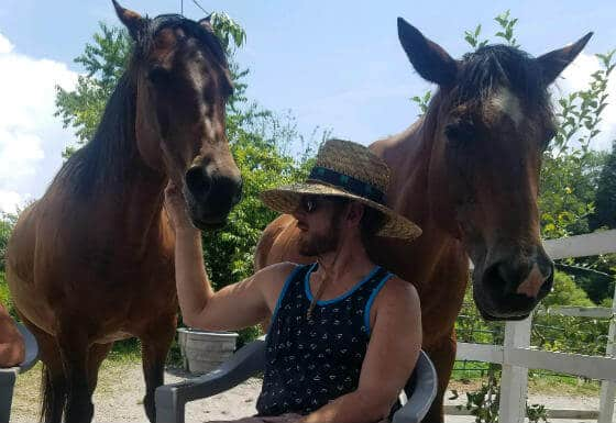 Equine Therapy for Drugs & Alcohol Addiction Treatment