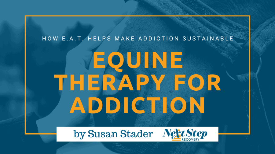Equine Assisted Therapy - What You Should Know: What Is? How It Works? How to Choose? Best for Who?